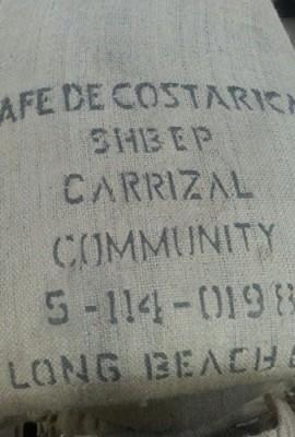 20LBS-Costa-Rica-Carrizal-0