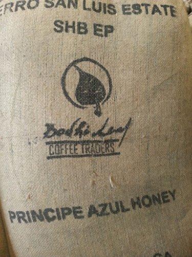 20LBS-Costa-Rica-Principe-Azul-0